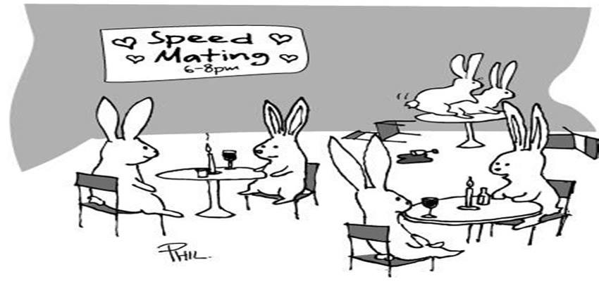 Swingles: LGBTQ Speed Dating